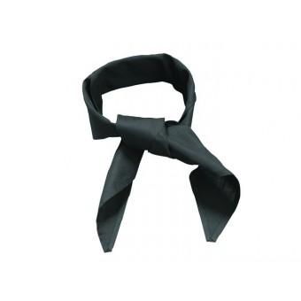 Black Neckerchief