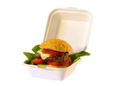 "Bagasse Bio Degradable Hamburger Box 6"""